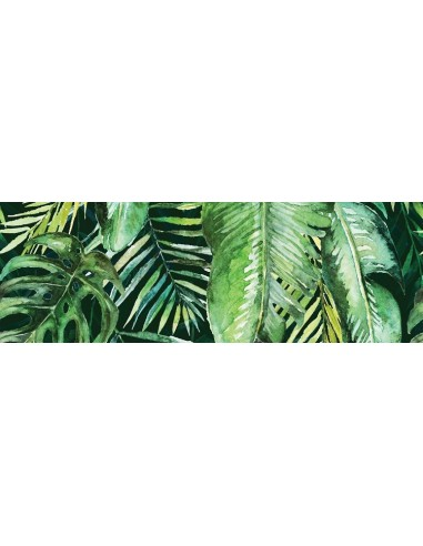 Braga Tropic A inserto 25x75 Rect GAT I